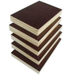 Eukalyptus-Kern Okoume/Furnierholz-Birke/Film stellten gegenüber,/das Handelsfurnierholz, die für Möbel/Baumaterial verwendet wurden