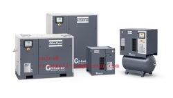 Atlas Copco SF SF SF122+ SF4 SF4+ SF6 SF6+ SF8+SF11+ SF15+ SF17+ SF22+ Sfd11+ Sfd15+ Sfd22+ SF SF6t8t sans huile compresseur à air de défilement