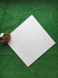 Foshan 건축재료 순수한 색깔 시골풍 사기그릇 지면 도와 (600*600mm)