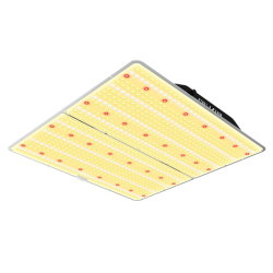 480 واط، مؤشر LED لزر Samsung Diodes Dimming 480 واط، حجم QB إضاءة خيمة مع ضمان لمدة 3 سنوات
