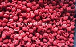 IQF 나무 딸기, 언 Rapsberries, IQF에 의하여 언 나무 딸기, IQF 나무 딸기, 언 나무 딸기, IQF 나무 딸기, Wholes/Brokens/Crumbles를 경작했다