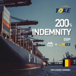 中国からのヨーロッパの海の輸送の貨物船への海の輸送箱の運送業者のエージェント