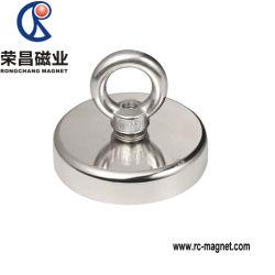 大きいパフォーマンスネオジムのリングの形の希土類磁石