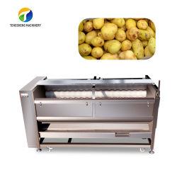 Wasmachine van de Slak van het Gebied van de Slak van het elektrische Veld de Schonere Borstel (ts-M800)