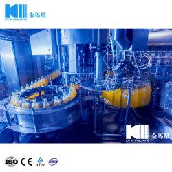 Planta de procesamiento de jugo para la venta de jugo/Zumo de embalaje/Planta Fabricante/costo de la planta de procesamiento de mango