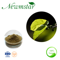 Morus L alba estratto naturale dell'estratto del foglio del gelso della pianta di certificazione cascer di Dnj 1%