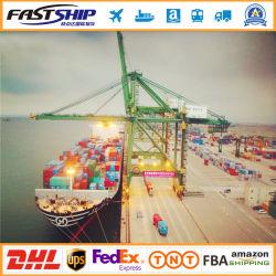 Top 5 des services de dédouanement Dropshipping FCL/LCL mer Ocean Freight au Venezuela