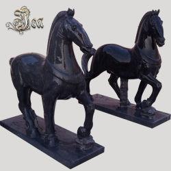 Marmeren Paard van de Steen van de Douane van nieuwe Producten het Zwarte voor OpenluchtVierkant