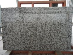 G439 / branco flor grande laje de granito para parede&Andar