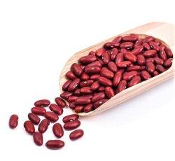 Heißes Verkaufs-chinesisches neues Getreide-Wholesale trockene rote weiße Bohnen preiswerteres