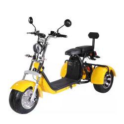 3 바퀴 큰 타이어 Trike ATV 성숙한 세발자전거 Citycoco 3 바퀴 전기 스쿠터 1500W/2000W EEC 증명서