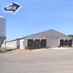 現代レイアウトデザイン鉄骨構造の層の卵の鶏のケージの肉焼き器の養鶏場の家