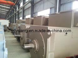 Siemens 1FC 6 Serie Wechselstrom-Drehstromgeneratoren (IFC6 456-6 560kw/1000rpm)