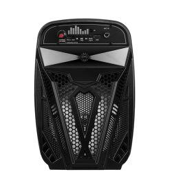 """6.5 """" ordinateur Mini Professional Powered audio sans fil Bluetooth Promotion portable actif Le président avec karaoké"""