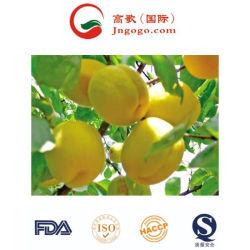 Neues Getreide gefrorene Frucht für den Export