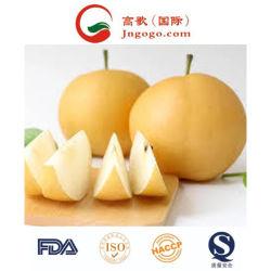 品質のDelicous極度のSingoのナシかHuangguanのナシまたはアジアのナシの製造者