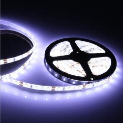 indicatore luminoso di striscia flessibile impermeabile esterno di 12V SMD 5050 LED