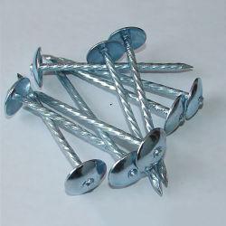 Le Béton en acier commun clou/toiture Cap
