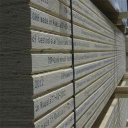 건물 건설을 위한 소나무 코아 LVL 비계 보드