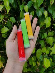 Lush Flavorable jetables de glace Mini Pod Ministick Vape F E cigarette jetable