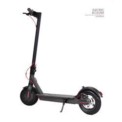 Hottest Fatbike hors route à 2 roues Panama 1000W Stand up Scooter électrique avec sac de golf