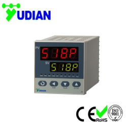 El control de temperatura el 30 de la rampa programable 96mm*96mm