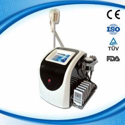 4 in 1 Draagbare Apparatuur van de Schoonheid van Liposuction van het Vermageringsdieet van /Body van het Vermageringsdieet van de Laser Cryo