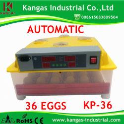 CE petit incubateur d'oeufs de reptiles approuvé pour la volaille (KP-36)