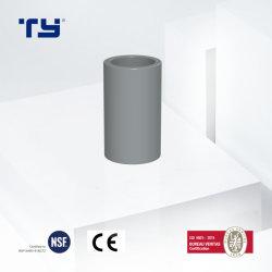 2020 Professional la norme ASTM D'Accouplement Accouplement de la qualité CPVC Raccords de tuyaux