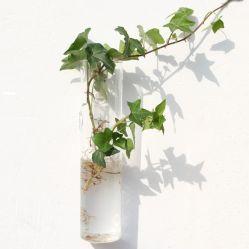 벽걸이 긴 튜브 하이드로포닉 유리 꽃병 홈 장식