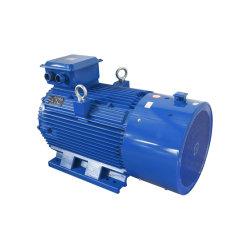 Vós3 Squirrel-Cage Ferro Fundido do enrolamento de cobre de alta potência especial de três fase de indução assíncrono AC Electric/Motor Elétrico