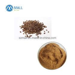 A perda de peso Cassia chá de sementes/Cassia Benefícios Sementes/ Cassia extrato de semente
