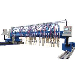 CNC van de hoge Efficiency de Automatische Scherpe Machine van de Bladen van het Ijzer van het Gas van het Staal Multi Hoofd Rechte