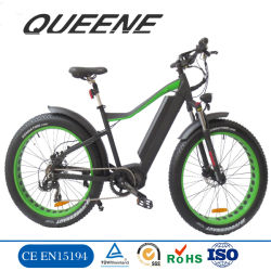 Queene/MID Laufwerk-fetter Gummireifen-BergFatbike 48V 750W 1000W Bewegungselektrisches Schmutz-Fahrrad-Fahrrad Ebike