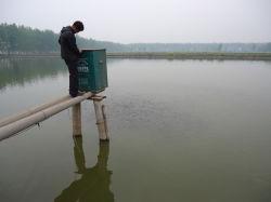 توزيع جهاز التغذية على بركة الأسماك