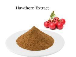 Usine de l'Aubépine naturel extrait d'alimentation de l'Aubépine Berry/fruits Fruits extrait de l'Aubépine P. E. 10 : 1