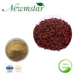 Китайский Красный Jujube экспортировалось Ziziphi Spinosae экстракт плодов