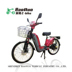 2021 Hot Sell 24 inch 48V 350watt Electric Bike met Midel Double stand Hot Sell in Brazilië