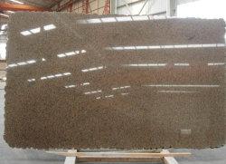 Pedra natural Tropic Brown azulejos de granito para parede de piso