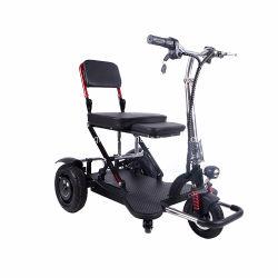 Trois roues scooter cyclomoteur électrique avec la CE