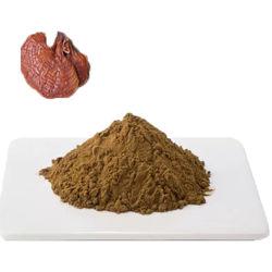 좋은 가격 가노더마 루시디um Reishi Mushroom Extract