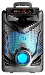 Altoparlante piccolo da 8 pollici con altoparlante per vivavoce Hi-Fi wireless Bluetooth FM TWS con microfono cablato