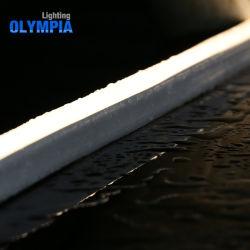 Aangepaste Mini LEIDENE van de Pool van de Verlichting van de Macht IP68 Lichte Strook
