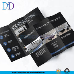 Druk van de Vlieger van het Pamflet van de Brochure van de Catalogus van het Tijdschrift van de Folie van de douane de Gouden voor de Vertoning van de Informatie van Producten