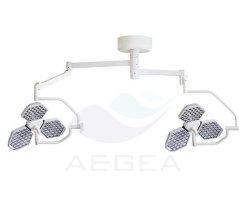 Главы государств с двойной индикатор Shadowless рабочий режим освещения медицинских переносной лампы