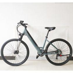 Nuovo punto di arrivo tramite la bicicletta elettrica Ebike poco costoso della sporcizia della bici di energia elettrica della bicicletta della città dalla Cina