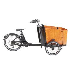 Bakfiets MID/Rear 모터 비 덮개를 가진 가족 아이를 위한 전기 화물 자전거 3 바퀴