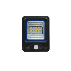 Het in een nis gezette LEIDENE van de Sensor IP65 10W Licht van de Vloed