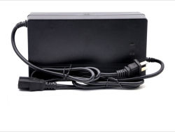 Storage 48V20ah Chargeur de batterie utilisé pour la voiture électrique Batterie Plomb cida