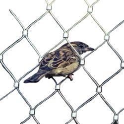 1.2-3 мм из нержавеющей стали проволочного каната Net сад защитной сетки провод ограждения